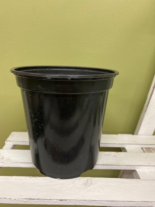 "6"" Black Nursery Pot"