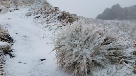 Très bref mais notable coup de froid à venir en altitude.