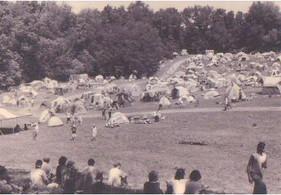 Hemp Aid Field.jpg