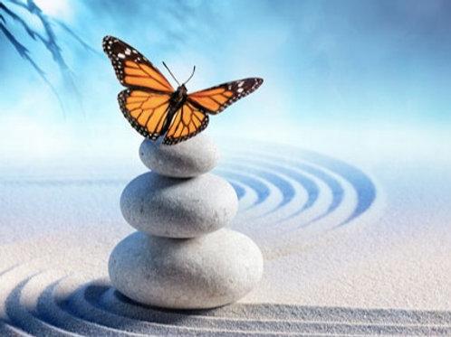 Les 6 étapes de la Transformation Intérieure