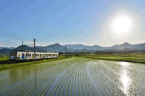 電車と田園.png