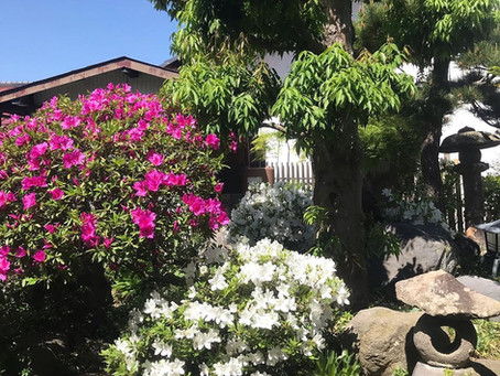 5月の塩田平の風景