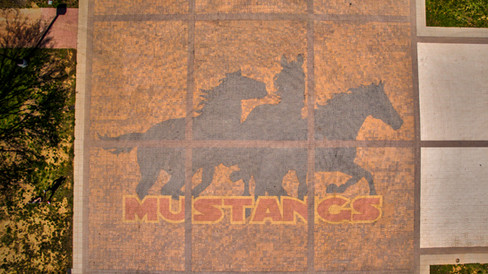 MSU-MustangWalk.jpg