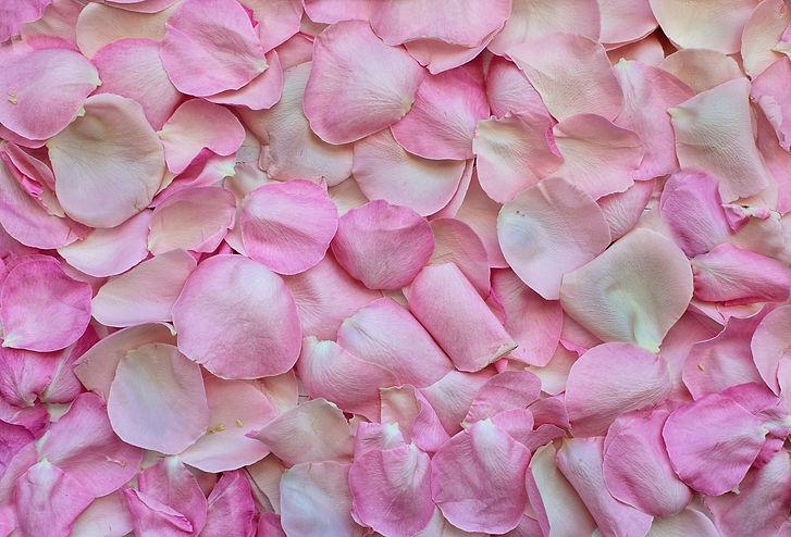 rose-petals-3194062_1920.jpg