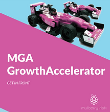 Mulberry_Risk_GrowthAccelerator_Brochure