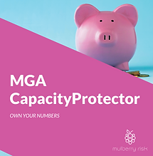 Mulberry_Risk_CapacityProtector_Brochure