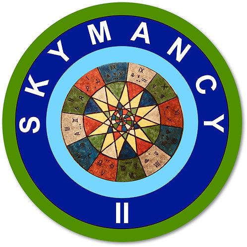 SkyMancy II:  Meet Your New Self