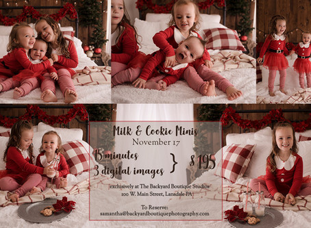 Schedule Your 2019 Holiday Mini Session Before It's Too Late!