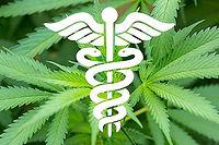 Cannabis-Medicianal.jpg