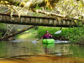 Beaver Creek - A Paddler's Dream