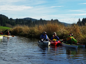 November 2014 Beaver Creek Paddle Trip