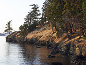 Four-Day Kayaking Expedition in the San Juan Islands - Day 3