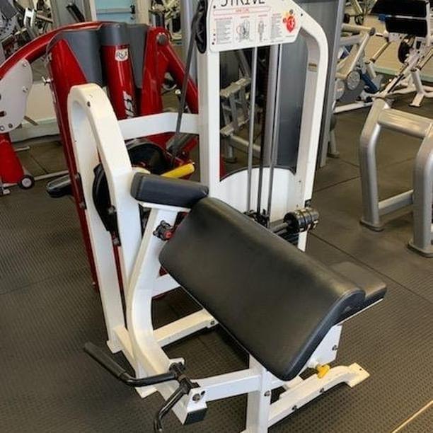 Strive Seated Biceps Curl