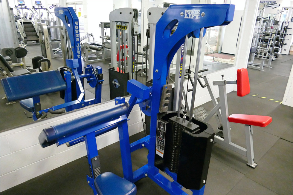 Power Lift Seated Biceps Curl
