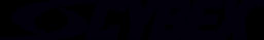 Cybex Logo1.png
