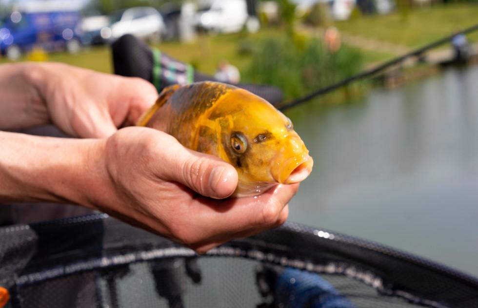 13 Fishing at Caistor Lakes  Jigsaw Poto