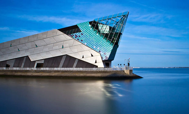 The Deep, sea life conservation, Hull