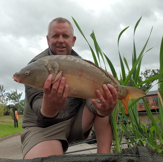 Mirror Carp from the heron