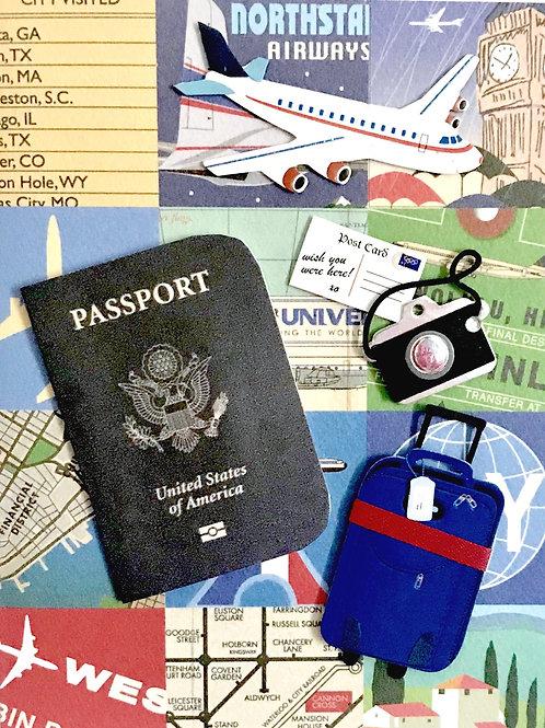 Travel Passport and Bag-1267