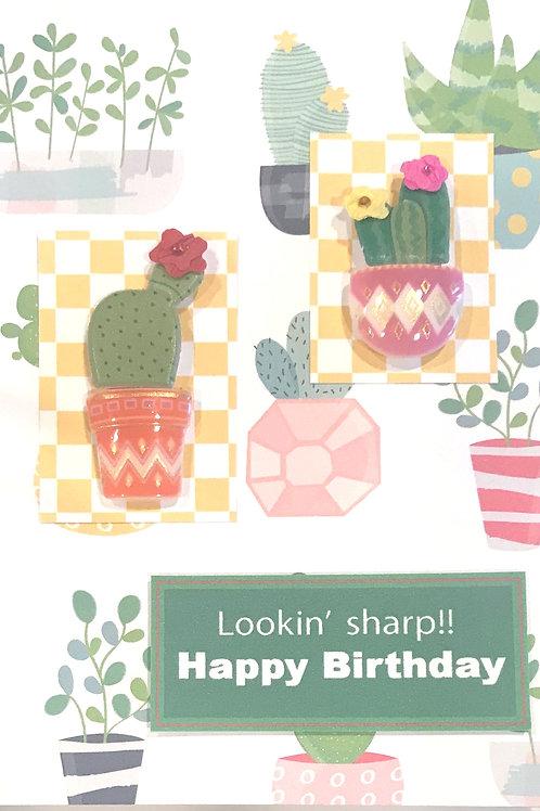 Cactus Birthday-1252