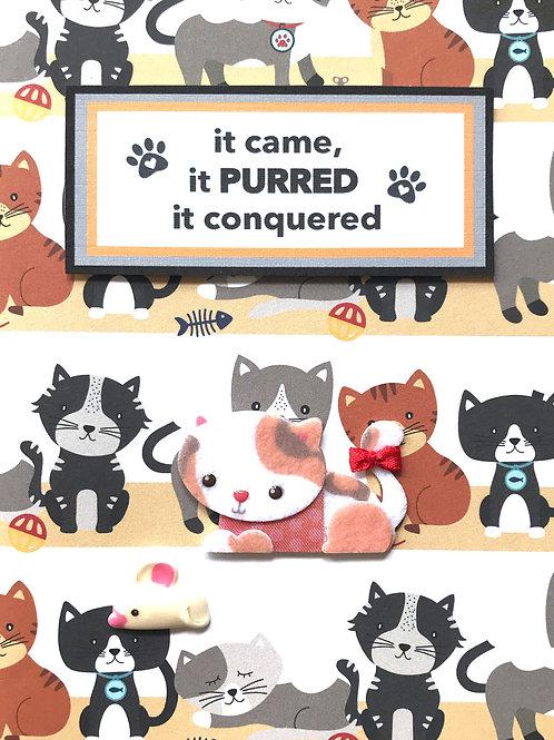 Cat Purred - A113