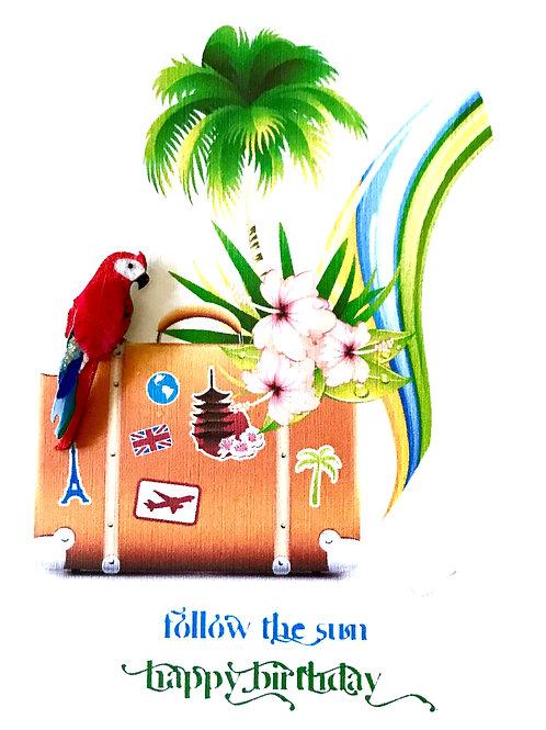 Follow the Sun Birthday-1203
