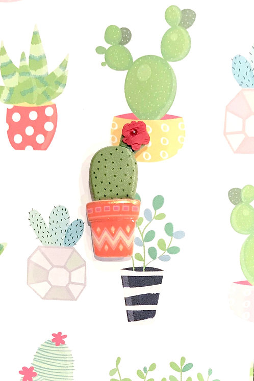 Cacti Asst Note Card Set-NC48