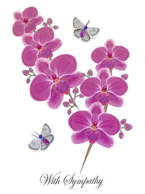 Sympathy Orchid  - 1179