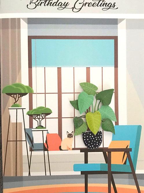 Birthday House Plants - 1422