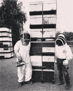 sierra_honey_farm_26870207_2118551281706