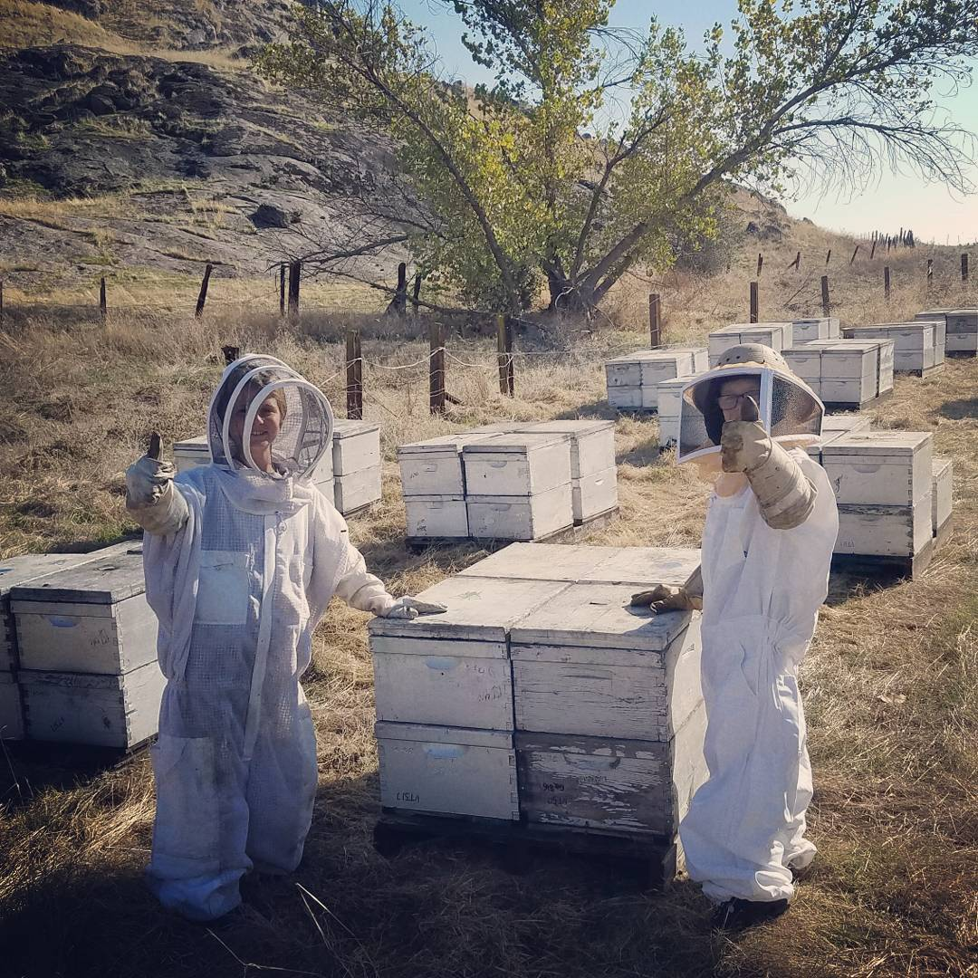 sierra_honey_farm_24327386_2055300866701