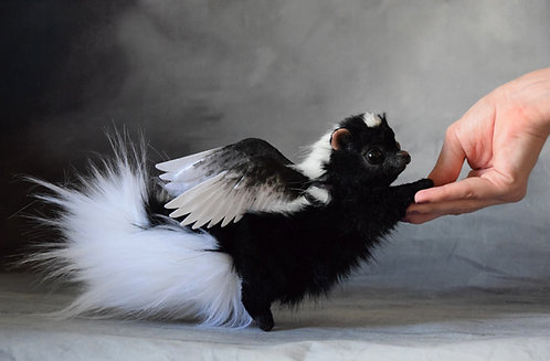 Angel Skunk