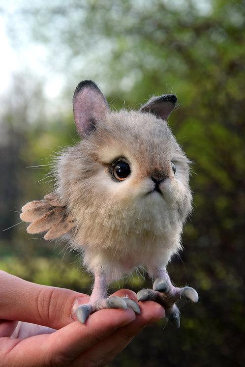 Rabbit Chick