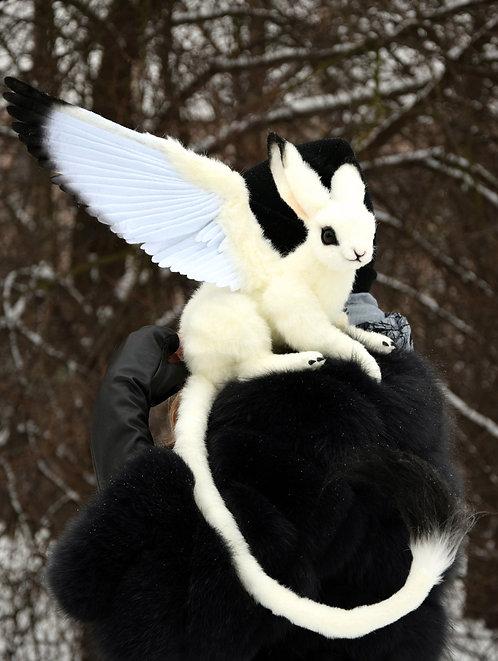Bellus Lepus Griffin
