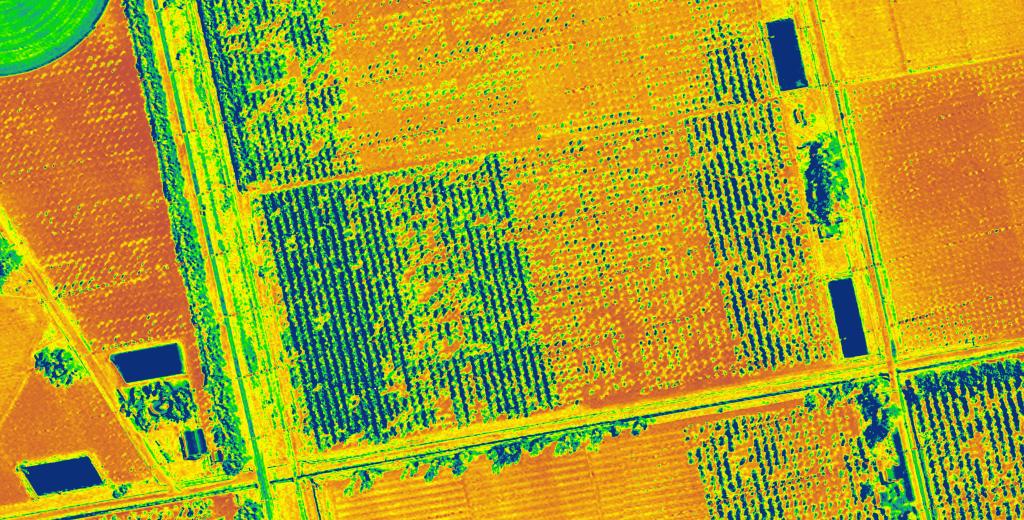 vegetation index very high resolution sa