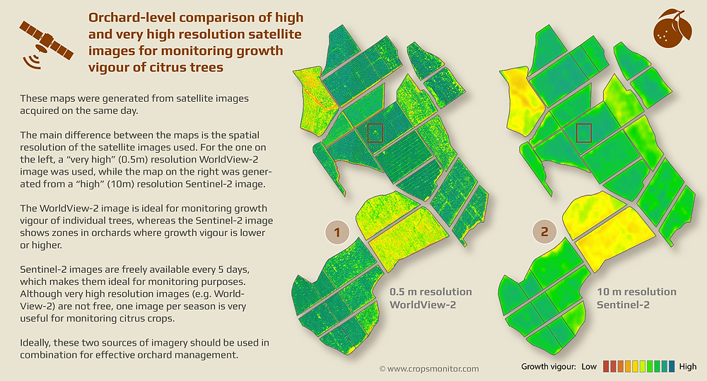 Orchard-level comparison of high and very high resolution satellite images for monitoring growth vigour of citrus trees