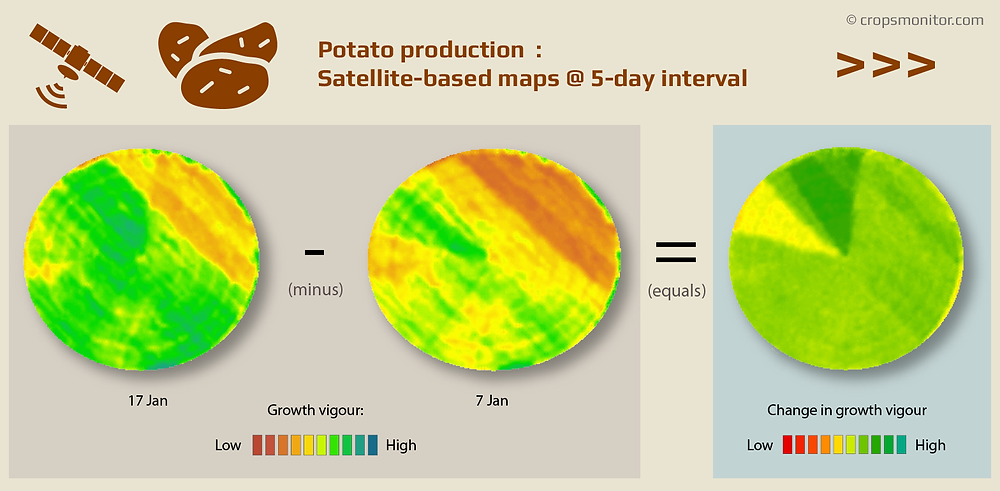 Change analysis of satellite images of a potato field