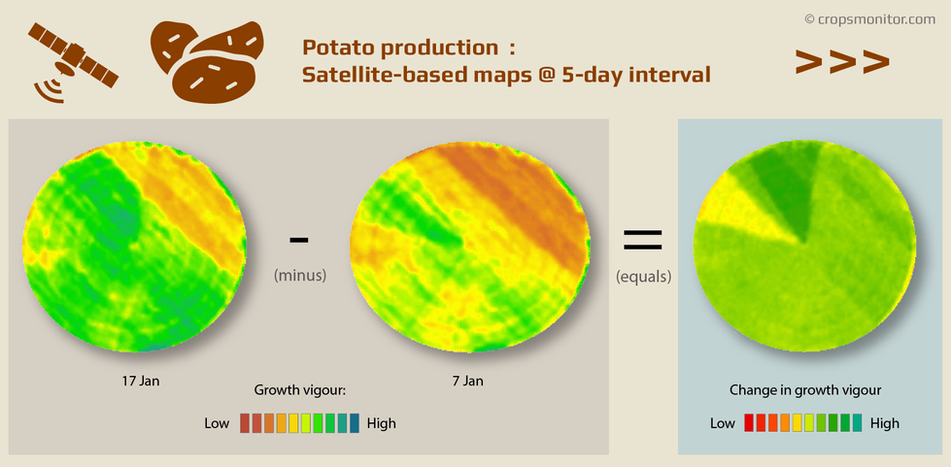 Changes in growth vigour in a potato field