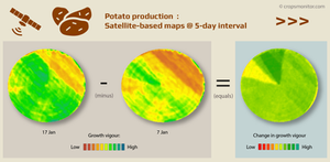 Change analysis of satellite images showing growth in a potato field