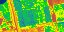 vegetation index of sentinel-2 image.png