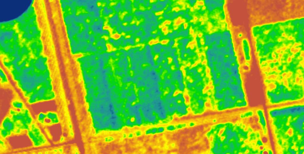 vegetation index of high resolution sate