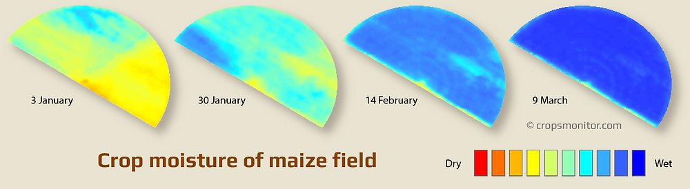 Example of using satellite imagery to monitor moisture conditions in a maize (corn) field