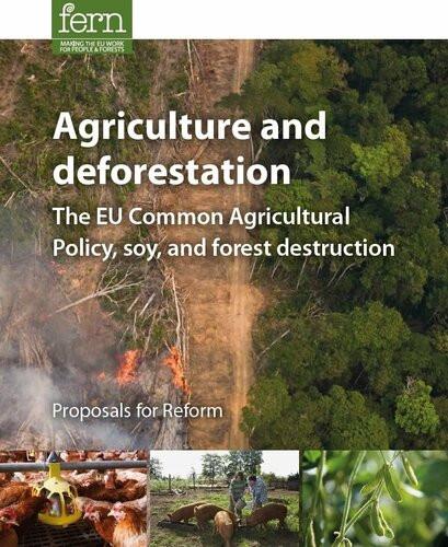 Agriculture & deforestation