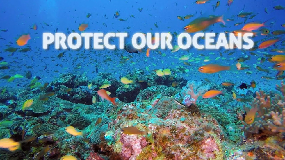 Protect our oceans - Vierhout
