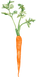 Carrotsmall.png