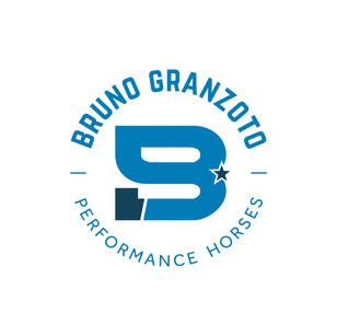 Identidade Visual Bruno Granzoto