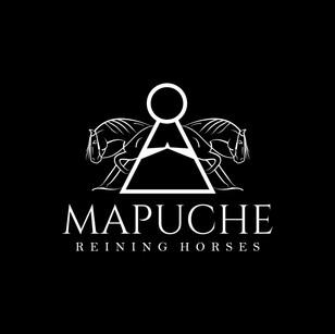 Identidade Visual Mapuche Reining Horses