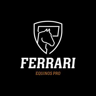 Redesign Ferrari Equinos Pro