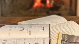 Livros que apaixonados por cavalos não podem deixar de ler