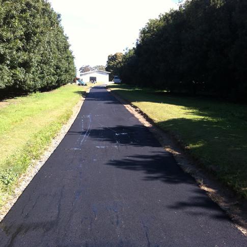 Asphalt Driveway Young